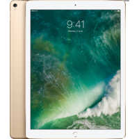Apple iPad Pro (12.9-inch) 256GB Wi-Fi + Cellular (Gold)